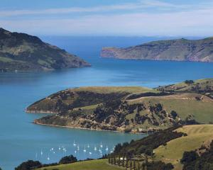 Akaroa Habour. Photo: Supplied