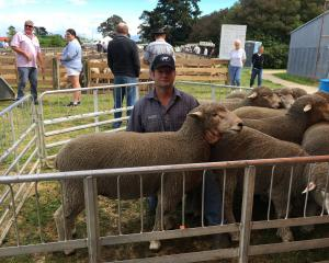 New Zealand Corriedale Council president Mark Sidey, of Waipara, was thrilled to win the council...