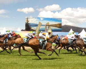 Shock Prospect ridden by veteran jockey Chris Johnson wins the first race at the Central Otago...