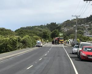 Emergency services at the scene of the crash in Ocean View. Photo: Gregor Richardson