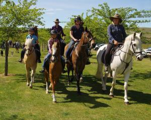 A team of horses and ponies form a guard of honour to remember New Zealand Women's Land Service...