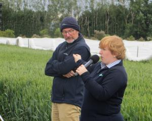 PGG Wrightson's Steve Shorter and FAR's Jo Drummond talk at Crops 2020the field day. PHOTOS: TONI...