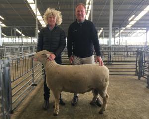 Blenheim farmer Christina Jordan (left) was thrilled to sell her Southdown ram hogget for $17,000...
