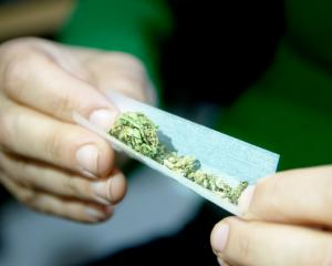 Consuming moderate amounts of THC - the main psychoactive compound in cannabis - can cause...