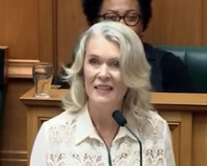 Ingrid Leary delivers her maiden speech in Parliament earlier this week. PHOTOS: PARLIAMENT TV