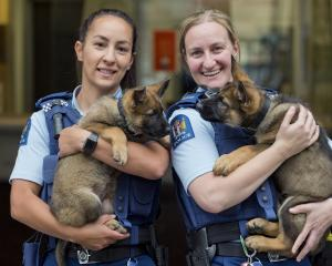 Constable Desiree Hoera (left), holding Harlem, and Constable Larissa Muir, holding Harlie, are...