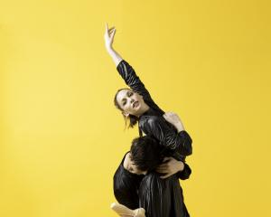The Dunedin Arts Festival in April will feature Subtle Dances, the debut show for newly formed...