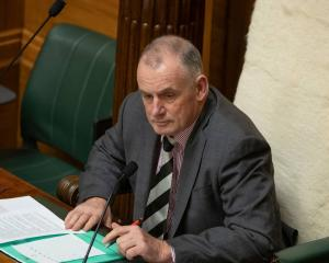 The Speaker, Trevor Mallard, was advised to settle a defamation case. Photo: NZ Herald