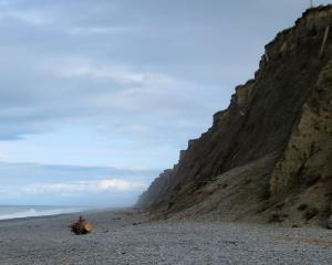 Crumbling coastal cliffs at Ashton Beach in Mid Canterbury. Photo: Supplied via Ashburton Courier