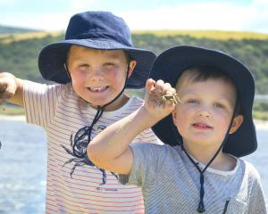Brothers Hudson (6, left) and Harvey (4) Sides show off the small crabs they caught while playing...