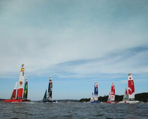SailGP teams competing during the Sydney event last year. Photo: Getty Images