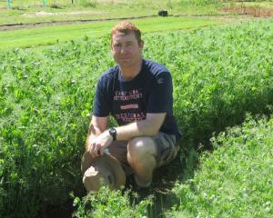 Otago Polytechnic's horticulture production Level 5 co-ordinator Jason Barry, pictured, along...