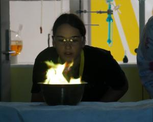Pupil Lara Harjes (16), of Palmerston North, turns a flame green by blowing copper salt on to it....