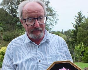 DHS president Stuart Brown with a dahlia in a frame, a new category at this weekend's show....