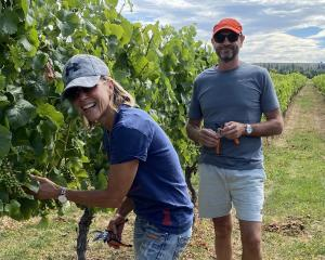 Jen and Brian Watson thin fruit on Weaver Estate vineyard this week. The dunedin couple took over...