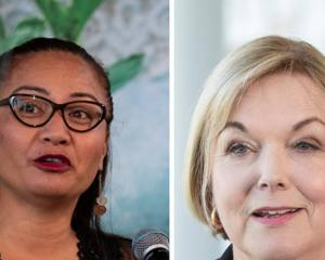 "Marama Davidson has criticised Judith Collins for a lack of ""cultural expertise"". Photos: NZ Herald"