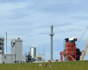 Danone Nutricia NZ's new biomass boiler plant  is taking shape at its Clydevale site. PHOTO:...