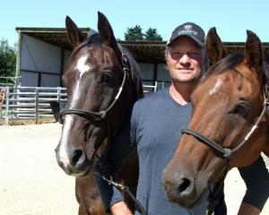 Greg Lamb at home on his Wendon Valley farm with his hazing horse Rocket (left) and steer...
