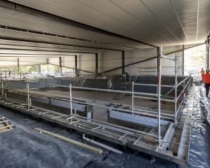 The Te Pou Toetoe: Linwood Pool complex. Photo: Newsline