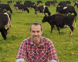 Cam Henderson has been appointed as an associate director on the DairyNZ board.PHOTO: DAIRYNZ