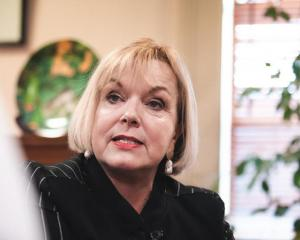 National Party leader Judith Collins says not everyone can afford to self-isolate. Photo: RNZ /...