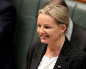Environment Minister Susan Ley. Photo: Getty Images