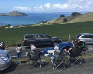 Watching and waiting at Whangārei Heads Photo: RNZ