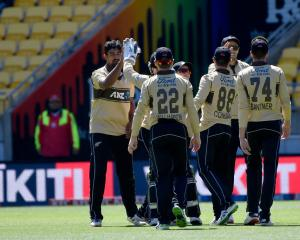 New Zealand Cricket has confirmed negotiations with the government to protect the Black Caps...