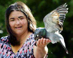 Yolande Steenkamp, of Dunedin, feeds pigeons at the Dunedin Botanic Garden this week. PHOTOS:...