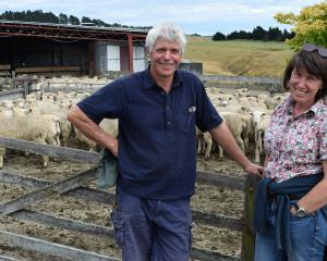 Phillip Hunt and Lizzie Carruthers relax before the auction of about 3000 lambs at a clearing...