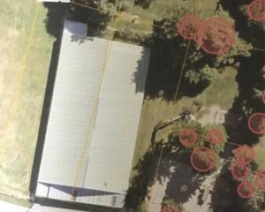 A satellite image shows the Kaitangata Community Pool and neighbouring trees under consideration...