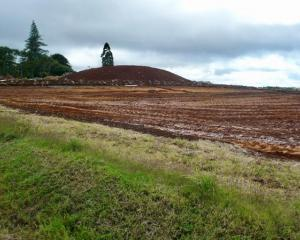 Land on Pukekohe Hill used for early potatoes now being readied for development. Photo: Supplied...