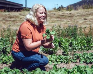 Forage and Feast director Naomi Lindsay at Pirate Produce, Lake Hawea.