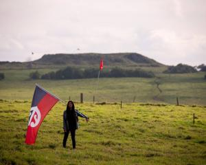 The Auditor-General has raised concerns over the Government's purchase of land at Ihumātao. Photo...