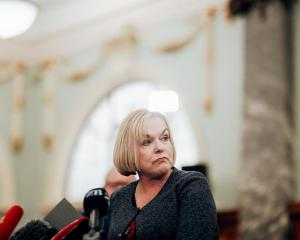 National leader Judith Collins Photo: RNZ