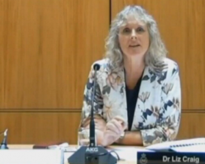 Liz Craig chairs the Health select committee. Image: NZ Parliament