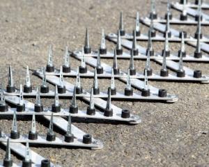 road-spikes.jpg