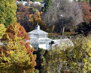 Autumn colours ring Dunedin Botanic Garden's Winter Garden Glasshouse. PHOTO: SUPPLIED
