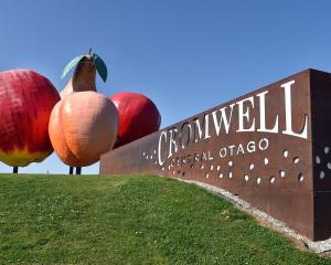 The ''big fruit'' fronting the Cromwell town centre was completed in 1990 to put the town on the...