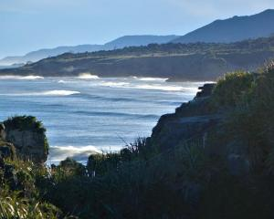 The West Coast of the South Island. Photo: RNZ