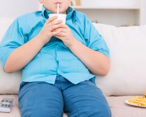 According to a recent New Zealand health survey, 11% of children were obese and a further 21%...