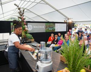 The Grow Ōtautahi Christchurch Garden Festival will return next year. Photo: Grow Ōtautahi...