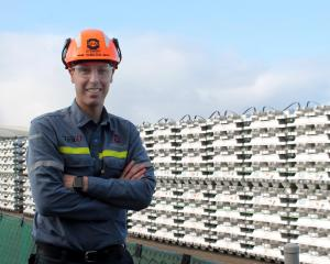 New Zealand Aluminium Smelters chief executive Stew Hamilton expects the outcome of a strategic...