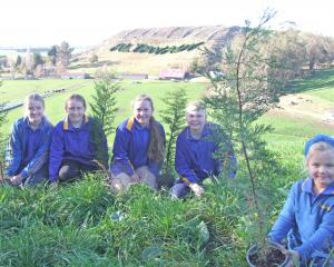 Preparing for the replanting of the Altavady hedge in North Otago are (from left) Papakaio School...