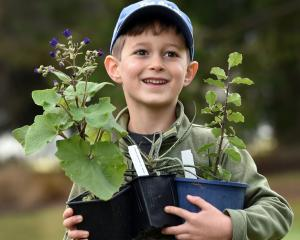 Louis Goodman (6), of Dunedin, is pleased with his purchases from the plant sale.