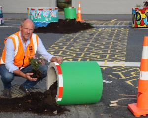 Gore District Council roading manager Peter Standring recovers plants after a planter pot was...