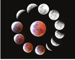 Photos compiled from a previous eclipse. PHOTOS: IAN GRIFFIN