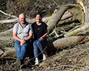 Sheep and beef farmers Brendon and Paula Cross relax on a branch of a poplar tree felled on their...