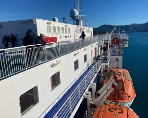 Passengers have been removed from two ferries docked at Picton as specialist police staff search...