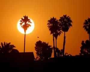 The National Weather Service has issued excessive heat warnings for five states - California,...